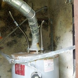 mold_removal_remediation